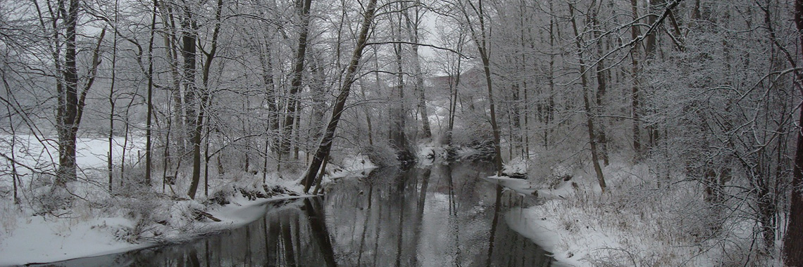 Wappingers Creek by Alan Berkowitz, Cary Institute of Ecosystem Studies.