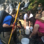 Eels, dragonflies, and engagement